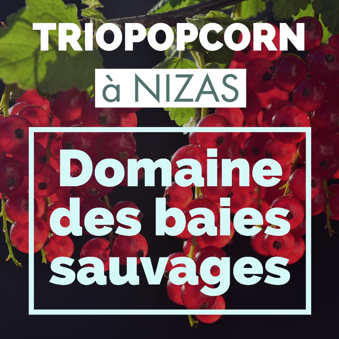 portes ouvertes Domaine Des Baies Sauvages triopopcorn